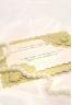 Золотое открытое письмо (СВ-051)