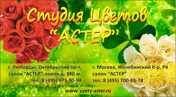Студия цветов 'Астер'